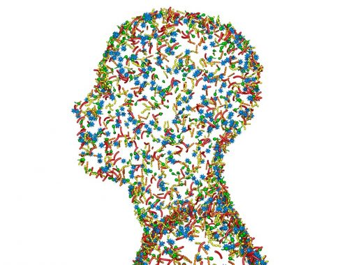 Dr. Paul Clayton - The microbiome and the brain